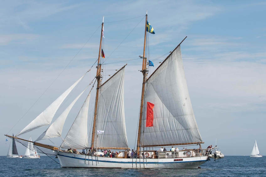 Hanse Sail Mitsegeln